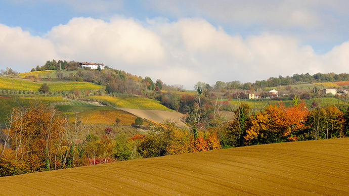 The Langhe countryside