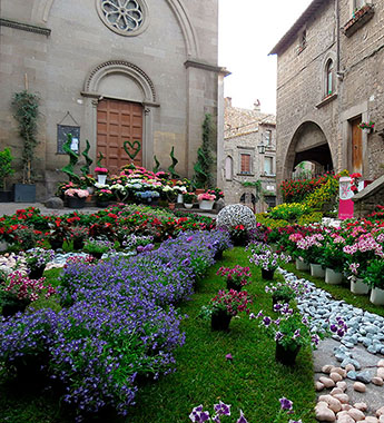 Viterbo - San Pellegrino in Fiore