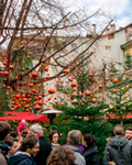 Festive decorations in Bolzano